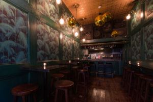DEAD PARROT – PRIVATE HIRE SPACE Book your party at The Dead Parrot, our upstairs private room with it's own private bar for guaranteed entertainment, Lol's and all round good times. Standing and seating space for up to 30 guests, with no hire fee. You'll get your own personal event manager, private use of the space with your very own bar, toilet and complete control of the music. A minimum spend may be required, enquire here bookings@adventurebar.co.uk for more information